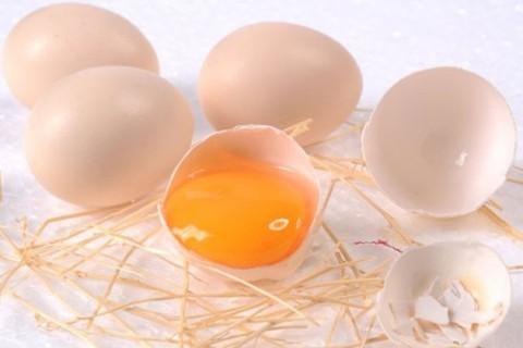 Trứng gà ta ngon - chất lượng